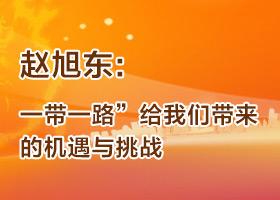 """赵旭东:""""一带一路""""给我们带来的机遇与挑战"""