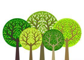 净化地球大气靠树木,守护室内空气就靠它